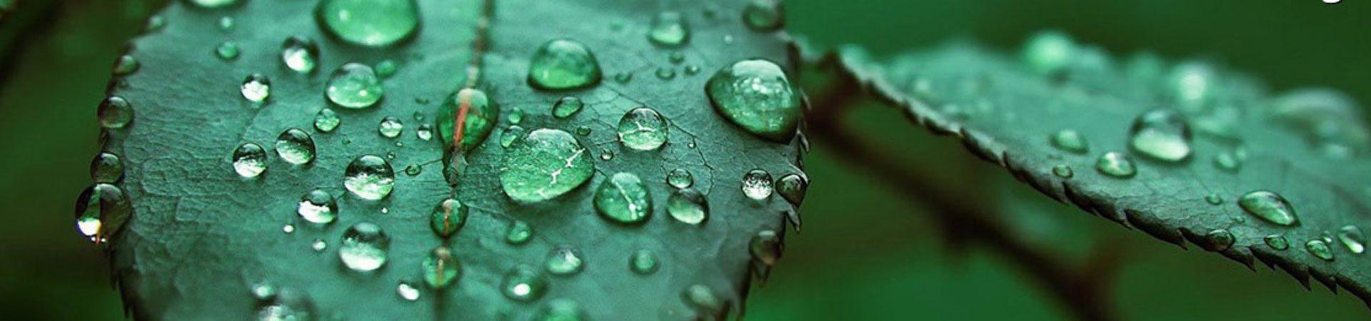 sistemi_di_filtrazione_kenfilt_green